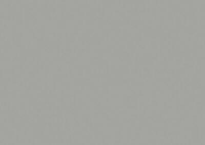 0197-Chinchilla Grey